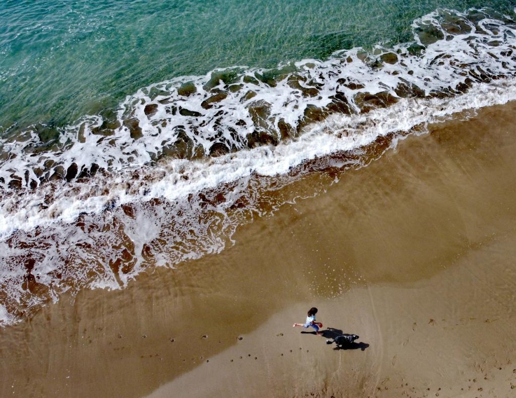 dog-walker-beach-Daniel-Kavanagh